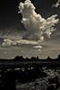 _62A8869 (gaujourfrancoise) Tags: unitedstates etatsunis monumentvalley arizona utah navajonation navajopark réservedesnavajos indiens monoliths monolithes westerns coloradoplateau plateauducolorado blackwhite bw noiretblanc nb gaujour