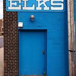 Blue Elks thumbnail