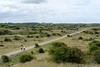 20170713_125341-X-T2-6208.jpg (Erwin Schoonderwaldt) Tags: netherlands castricum dunes landscape