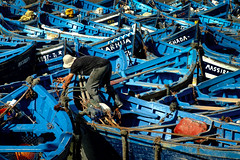 Long reach (Tilemachos Papadopoulos) Tags: qoq workers essaouira fujifilm fujinon fuji outdoor contrast street fisherman landscape colourful blue morocco boat