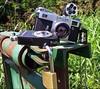 today ;/) (schyter) Tags: киев 4a kiev 1967 arsenal zavod ukranian sovietcamera jupiter 8 lens 250 soviet film pellicola 24x36 rangefinder contax copy