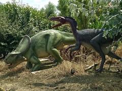 Protoceratops & Troodon (retrosaurus_rex) Tags: dinosaur dinosaurs dinopark dinosaurpark belgium trex tyrannosaurus rex velociraptor dipoloducus brontosaurus triceratops stegosaurus jurassicpark jurassicworld