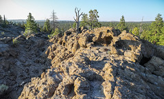 Afternoon atop Sand Rock in Lost Forest (BLMOregon) Tags: blm bureauoflandmanagement christmasvalley oregon hiking sandrock lostforest sunset ponderosa pine lakeview landscape oregonoutback highdesert basinandrange volcanic