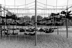 playground love (coupeuse meier) Tags: playground