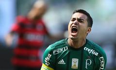 Palmeiras x Vitória (16/07/2017) (sepalmeiras) Tags: dudu allianzparque campeonatobrasileiro palmeiras sep sã©riea vitã³ria palmeirasxvitoria16072017 sériea vitória