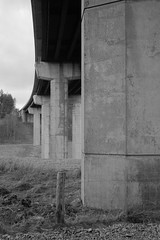 Fanfare for the Common Man (Barnaby Nutt) Tags: 200 ddx filmapril2017 fp4 ilford leicam6 roll6 findhorn a9 bridge concrete support pillar