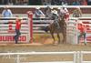 DSC02076 (♥ MissChief Photography ♥) Tags: calgarystampede2017 calgary canada horses bull cowboy bullfighters