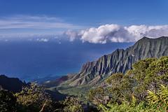 Pu'u O Kila Lookout, Kauai (AgarwalArun) Tags: sonya7m2 sonyilce7m2 hawaii kauai island landscape scenic nature views mountain fog clouds napalicoast pacificocean ocean water waves surf napali ruggedcoastline cliffs pu'uokilalookout