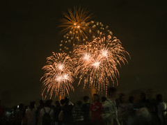 Beyond the Crowd (H.H. Mahal Alysheba) Tags: japan firework tokyo night nikon d800 afs nikkor 2485mmf3545