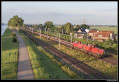 DBC 6433 + 6454 - 59609 (Spoorpunt.nl) Tags: 23 juli 2017 loenersloot db cargo dbc 6433 6454 werktrein trein 59609