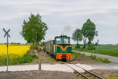 Besuch bei der Schrodaer Kreisbahn -IV- by ТУ4 - ... aufgenommen vor dem Endpunkt Zaniemysl