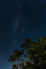 Milky Way at Regua, Rio de Janeiro (Rod.T28) Tags: milkyway nightphotography stars reguareservaecologica canon1dsmarkiii canon1635mm28lii