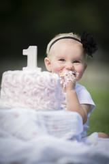 DSC_1825 (Jon Ashley Photo) Tags: pearson park oregon ohio 1st year one baby girl cake smash d600 nikon strobist ad200 parapop 38 inch softbox