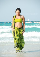 Indian Actress Haripriya Hot Sexy Images Set-2  (87)