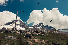 Gran-paradiso-1794.jpg (Enricu) Tags: stone national landscape eos80d nationalpark sky 80d tokina adventure snow mountain valsavarenche valledaosta italy it