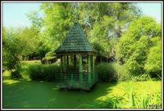 La vie en vert ! (Les photos de LN) Tags: kiosque cabane rivière jardinpublic parc verdure végétation nature cabanon gloriette