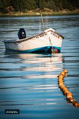 _MG_6599-2 (Alex Chilli) Tags: massachusetts usa america cape cod landscape