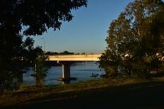 Tallon Bridge [Bundaberg Australia] (Images by Jeff - from the sea) Tags: bluesky bundaberg blue burnettriver gumtree water bridge tallonbridge streetlights queensland australia nikon d7200 tamronsp2470mmf28divcusd outdoor afternoon landscape topf25