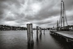 Harbor Shots II