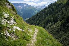 9-Seen-Weg Obergoms (8) (Toni_V) Tags: m2404638 rangefinder messsucher leicam leica mp typ240 28mm elmaritm12828asph hiking wanderung randonnée escursione wallis valais alps alpen trail wanderweg sentiero 9seenweg grimselpassgeschinen switzerland schweiz suisse svizzera svizra europe landscape ©toniv 2017 170715 goms obergoms