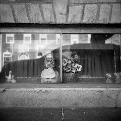 (patrickjoust) Tags: tlr twin lens reflex 120 6x6 medium format black white bw home develop discontinued expired film blancetnoir blancoynegro schwarzundweiss manual focus analog mechanical patrick joust patrickjoust baltimore maryland md usa us united states north america estados unidos urban city highlandtown row house basement window display figurine doll formstone keystone reflection artificial flowers