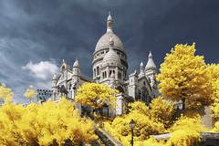 Golden Hill (PLF Photographie) Tags: infrared infrarouge paris hill butte montmartre sacré coeur monument architecure or gold golden doré