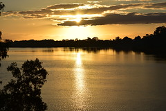 In gold (Images by Jeff - from the sea) Tags: goldensunset reflections clouds trees nikon tamronsp2470mmf28divcusd twilight dusk water bundaberg queensland australia landscape mangrovetree gumtree burnettriver 7dwf 1500v60f topf100 exquisitesunsets