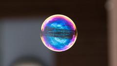 Just a bubble (m2onen) Tags: bubble soapbubble soap a6300 sony sal70400g laea3