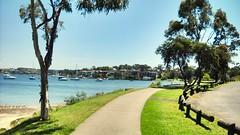 Bay of Sydney (melqart80) Tags: water australia baia