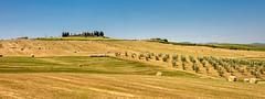 Tuscany panorama (hjuengst) Tags: toskana tuscany italy vald´orcia hill harvest cornfield panorama