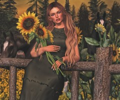 Southern Girl (kyreneglendevon) Tags: avi avatar blogging bloggers blogger blog blogs maitreya mesh life catwa secondlife second sl 2ndlife people pose dead dollz kiddo oh mea carnell olivia lalonde lepoppycock poses truth hawks hair u10 sunflowers