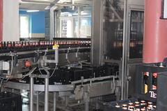At the Texel brewery (Davydutchy) Tags: texel oudeschild eiland island insel île noordholland nederland netherlands niederlande paysbas texelse brouwerij brewery brauerei pivovar bier beer bière pivo cerveza beoir пиво biero bir øl μπύρα sör بيرة בִּירָה bottelarij bottling abfüllen fill june 2017