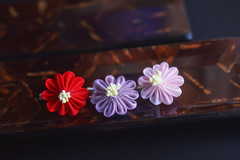 3 winter chrysanthemums (Bright Wish Kanzashi) Tags: tsumami zaiku kanzashi silk dyed handmade tsumamizaiku tsumamikanzashi japanesetechnique flowers handdyed bespoke hanatsukuri цумами канзаши 簪子 instaart supportartists 手作り customorderswelcome etsyseller hairpin オーダーメイド 手染め ハンドメイド 伝統工芸 つまみ細工 簪 コーム ヘアアクセサリー winterflower chrysanthemum winterchrysanthemum purple pink red bobbypin hairgrip brightwishkanzashi