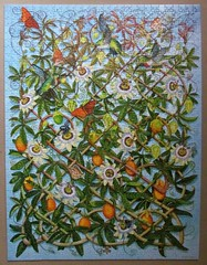 Passion Flowers (pefkosmad) Tags: jigsaw puzzle hobby leisure pastime 1000pieces secondhand used incomplete missingpieces passionflowers trellis rachelarbuckle painting purrfectpuzzles art celticcollection
