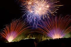 Fireworks (ComputerHotline) Tags: fireworks firework feudartifices night nuit longexposure poselongue expositionprolongée feudartifice feuxdartifices prisedevueenextérieur outdoors imagesaisiesurlevif candid belfort franchecomté france fra