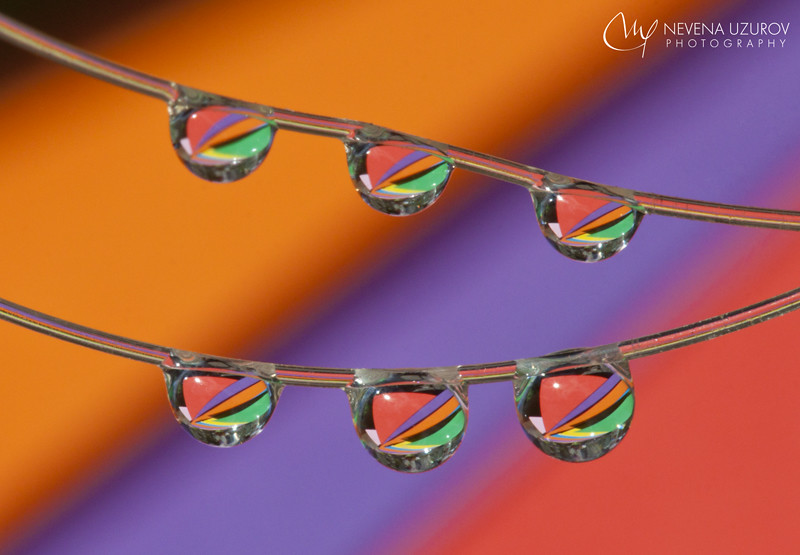 String Lights Makro : The World s Best Photos of droplets - Flickr Hive Mind