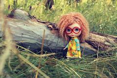 IMG_7325 (helenaaahaha) Tags: blythe blythedoll blytheinrussia bigeyes blythedollcustom customblythe custom customizedbyhelenaaa cutethings gingerhair fbl freckles weekend sweety summer