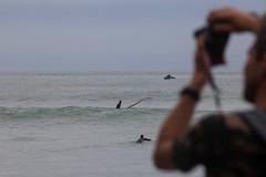 (christil) Tags: étretat normandie france surf