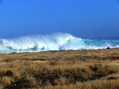 Houle d'hiver (MrBins) Tags: vagues wave houle