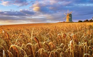 Windmill at Lewes