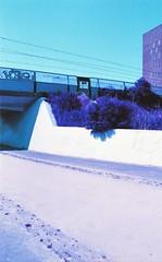 Almere Poort, Almere, FL (Jickatrap) Tags: pentaxmz50 pentax 35mm 写真フィルム analog film filmphotography フィルム lomochrome lomochromepurple 郊外 suburbia 鉄道 跨線橋 道路 calle ストリート 低木 フィルム写真 photographersontumblr フィルムカメラ newtopographics urbanlandscape オランダ almerepoort almere flevoland 紫 青