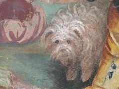 Milan, Italy - Dog detail - Pinacoteca di Brera museum (ashabot) Tags: milan italy art museum artmuseum