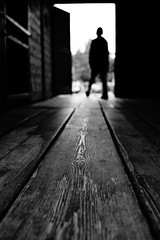 Close to the ground (stefankamert) Tags: stefankamert rx1r rx1 sonyrx1r sony ground fullframe bw baw bnw noir dof perspective blackandwhite mirrorless blurry blur wood
