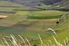 onde di verde (zen56zen) Tags: castelluccio verde colori paesaggio landscape colors