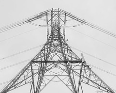 Pylon (whistlingtent) Tags: pylon electricity lookup lookingup steel theperfectx powerlines architecture blackandwhite monochrome highkey angles straightlines