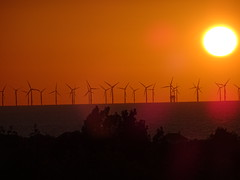 Sunset over the wind farm Prestatyn (paulstead2) Tags: northwales windfarm irishsea prestatyn sunset
