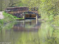 Cowshot Bridge and Frimley Lock, Basingstoke Canal (Iain Targett) Tags: 50walksinsurreyjessopsjauntthebasingstokecanal water bridge