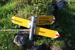 Wegweiser oberhalb des Risipass (uwelino) Tags: switzerland swiss swisstravel swisstravelspectacular schweiz alpstein stgallen alpen alps 2017 europa europe wandern wegweiser