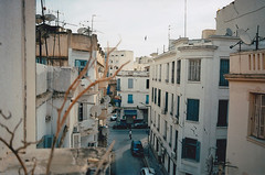 Flying (GrailK) Tags: contax139 tunis tunisia film argentique analog colours city urban bâtiment building babelkhadra swallow hirondelle street rue 100iso 28mm