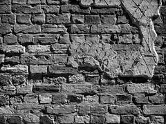 Port Arthur 006 (Peter.Bartlett) Tags: vsco lunaphoto ilfordpanfplus50emulation monochrome m43 australia wall olympusomdem5 tasmania blackandwhite microfourthirds peterbartlett portarthur au